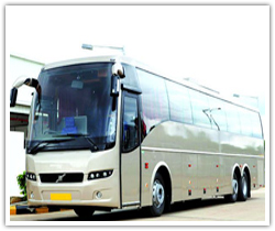Volvo Bus 51 Seater